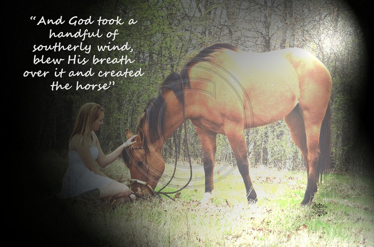 Cowboys And Their Horses Quotes. QuotesGram