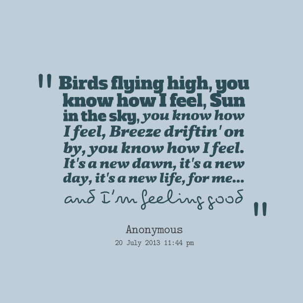 Quotes About Birds Flying. QuotesGram - photo#2