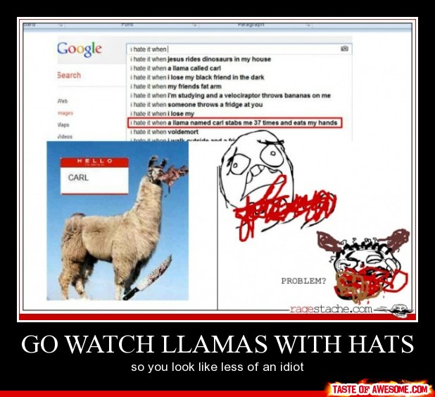 Awesome Llama Photos With Quotes. QuotesGram