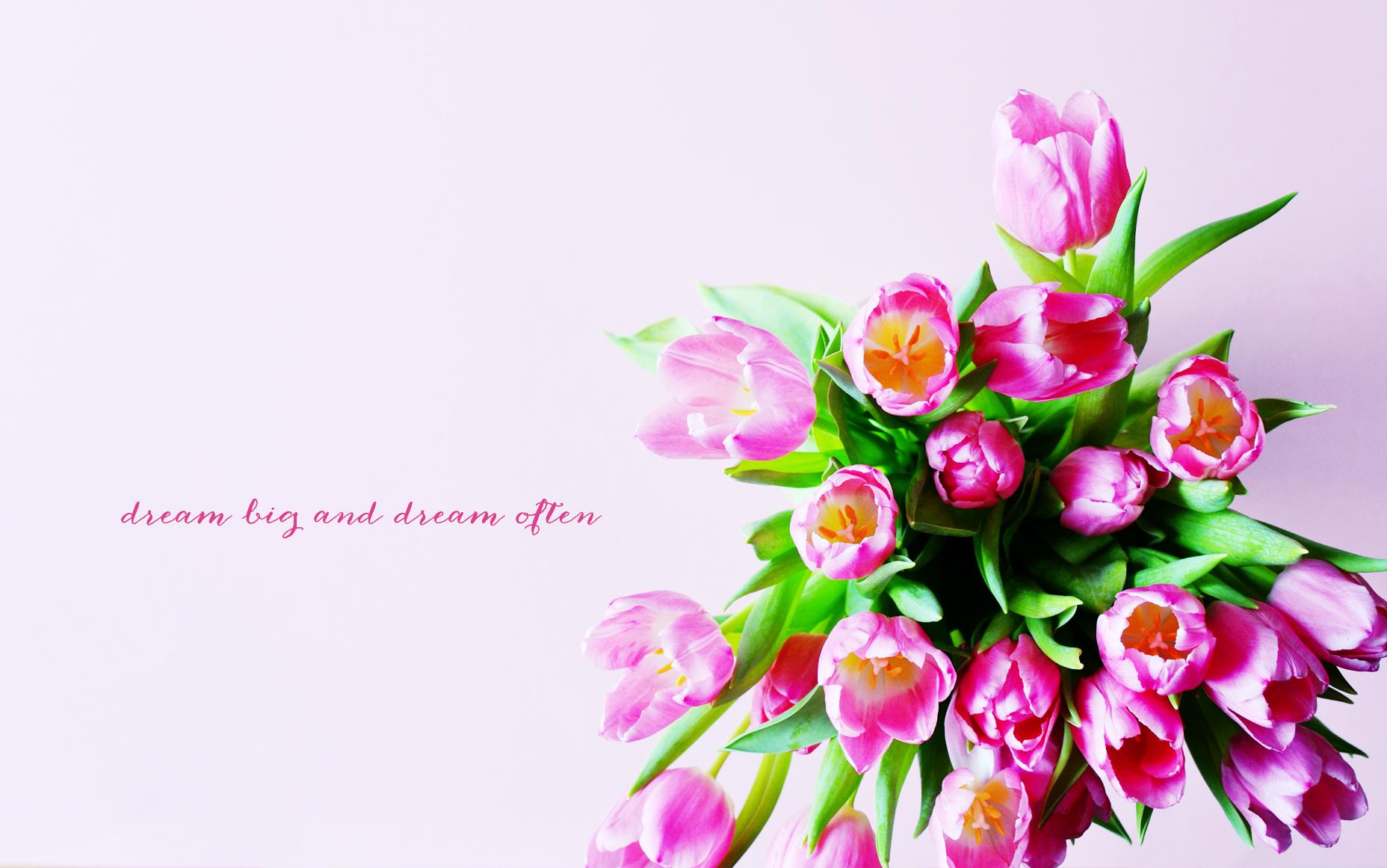 Tulip Quotes Quotesgram