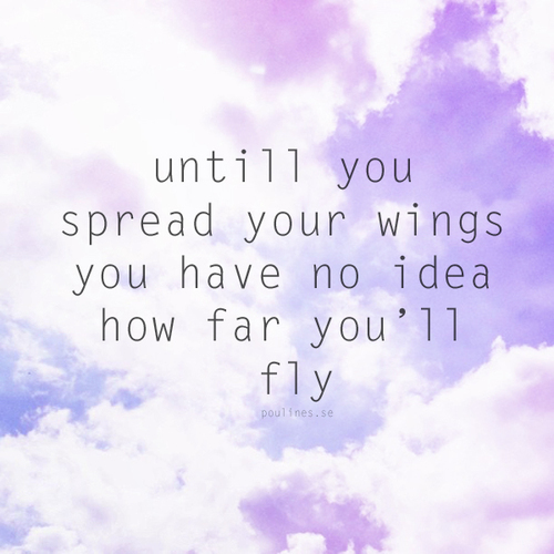 Flying Quotes: Quotes About Wings And Flying. QuotesGram