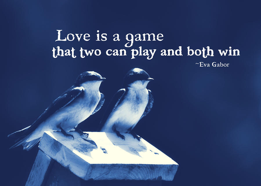 Love Bird Quotes And Sayings