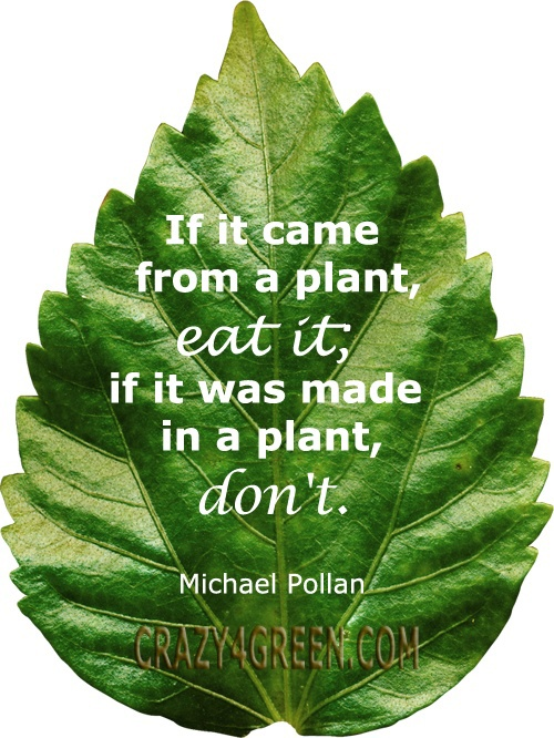 michael pollan quotes on food quotesgram