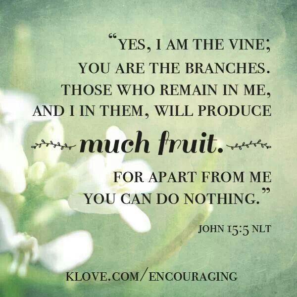 John 15 7 Bible Quotes. QuotesGram