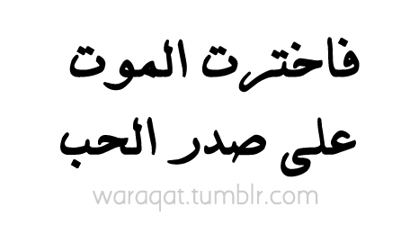 arabic quotes about love quotesgram