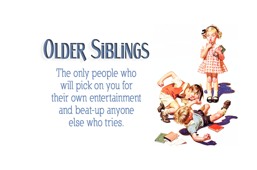Funny Quotes About Brothers: Older Sibling Quotes. QuotesGram