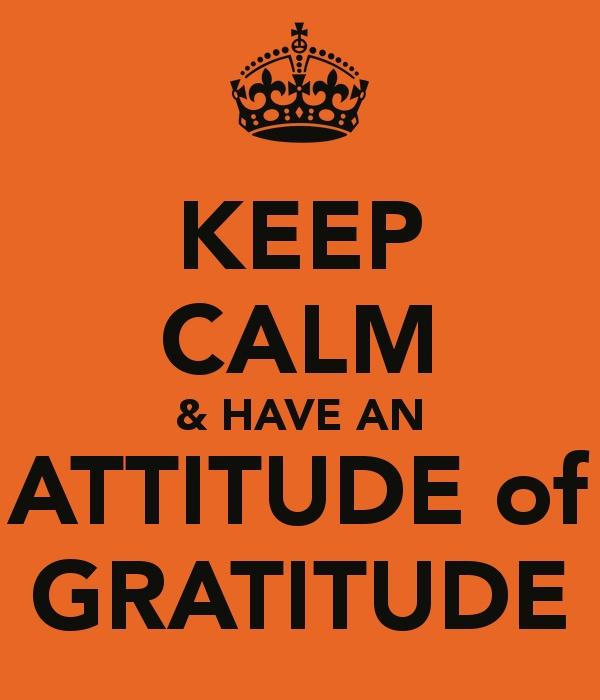 Quote About Thanksgiving >> Attitude Of Gratitude Quotes. QuotesGram