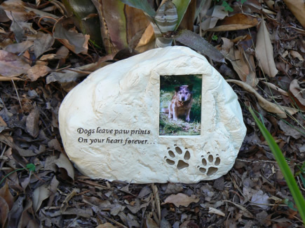 Urn For A Dog Quotes Quotesgram
