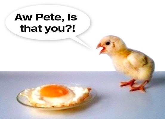 Chicken Egg Or The Quotes Quotesgram: Chicken Egg Quotes. QuotesGram
