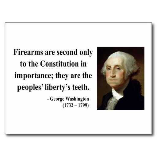 Quotes About George Washington By John Adams: Quotes On Guns George Washington. QuotesGram