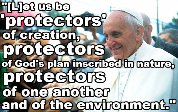 Quotes Pope Francis And Animals Quotesgram: Quotes Supporting Animal Testing. QuotesGram