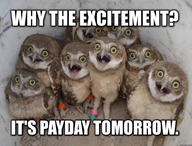 Tomorrow Funny Quotes Quotesgram: Payday Quotes Squirrel. QuotesGram