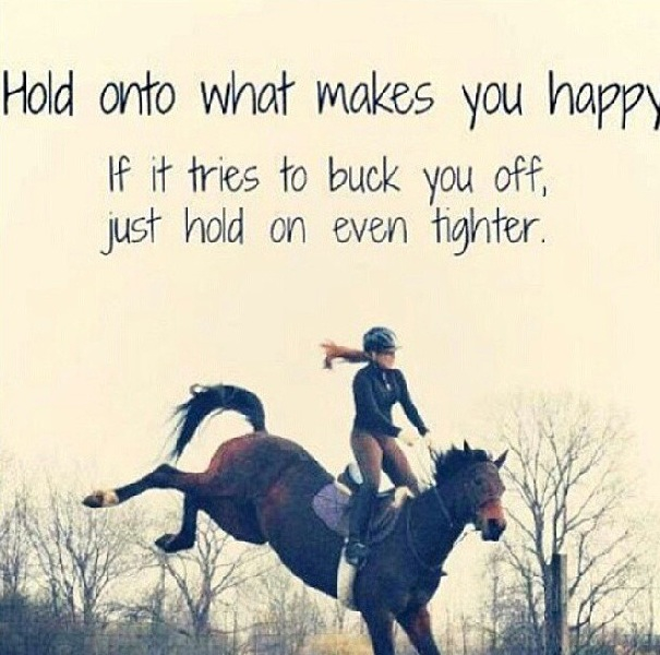 Horse Quotes That Will Make You Cry Quotesgram