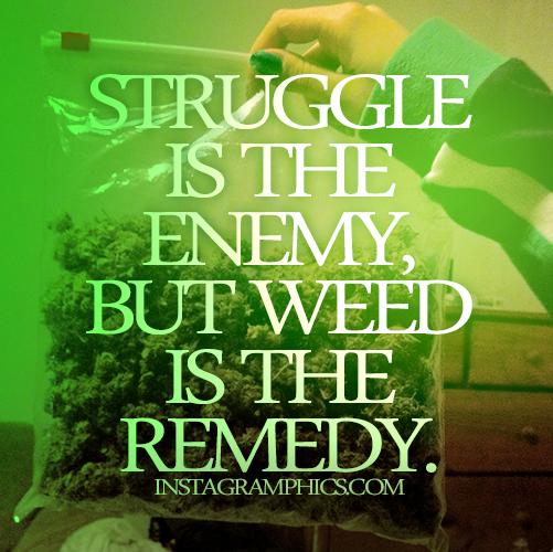 Funny Quotes About Marijuana Quotesgram
