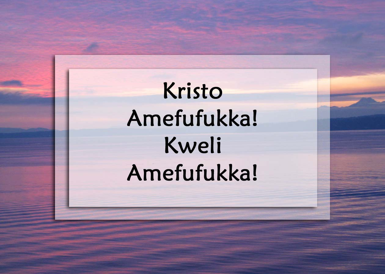 Godmother Quotes Funny Quotesgram: Swahili Funny Quotes. QuotesGram