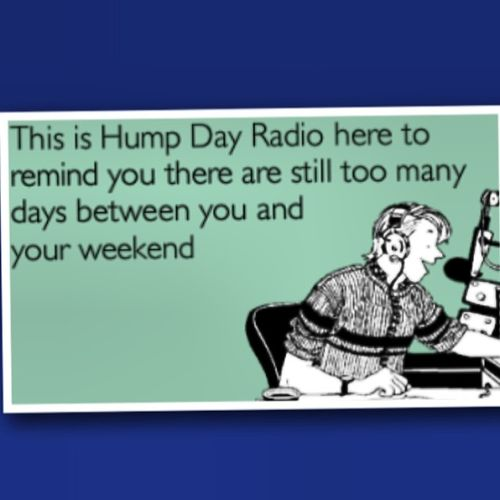 Funny Hump Day Quotes: Hump Day Funny Quotes. QuotesGram