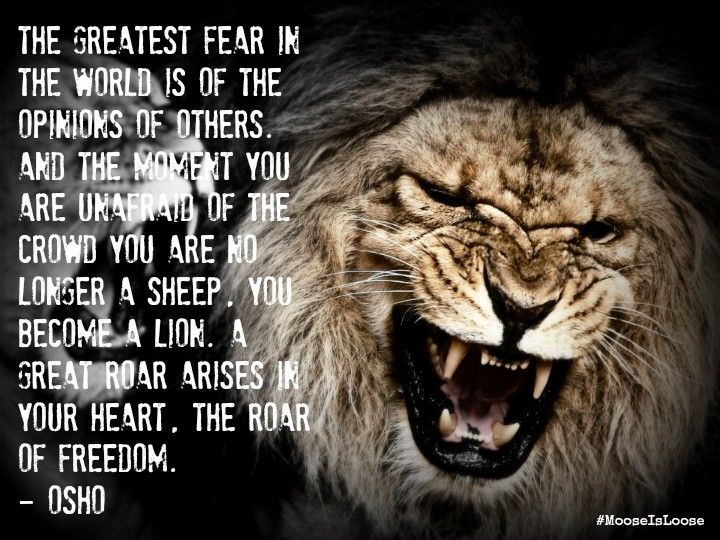 Lion Inspirational Quotes Quotesgram. Instagram Quotes Hip Hop. Birthday Quotes Countdown. Confidence Quotes From Books. Replace Single Quotes Using Sed. Alice In Wonderland Quotes Eat Me. Thank You Jesus Quotes Images. Quotes About Moving On Grey's Anatomy. Bible Quotes Youth Inspiration