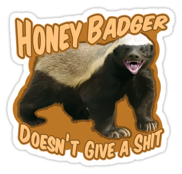 Honey badger dont give a shit - photo#30