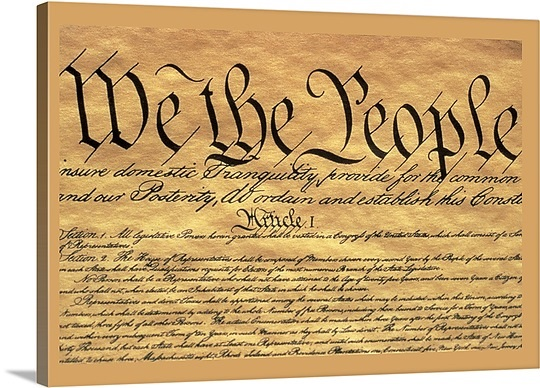 preamble united states constitution essay The preamble and the constitution of the united states did not commence its  operation until the first wednesday in march, 1789 after this date the preamble.