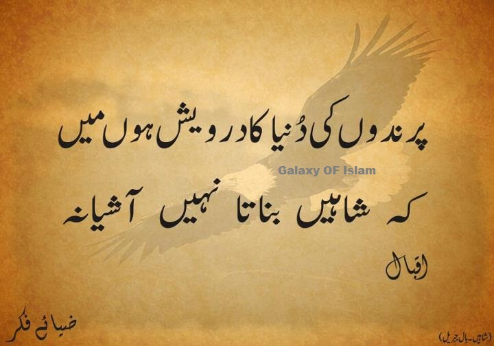 Translations Into Italian: Iqbal Quotes Urdu. QuotesGram