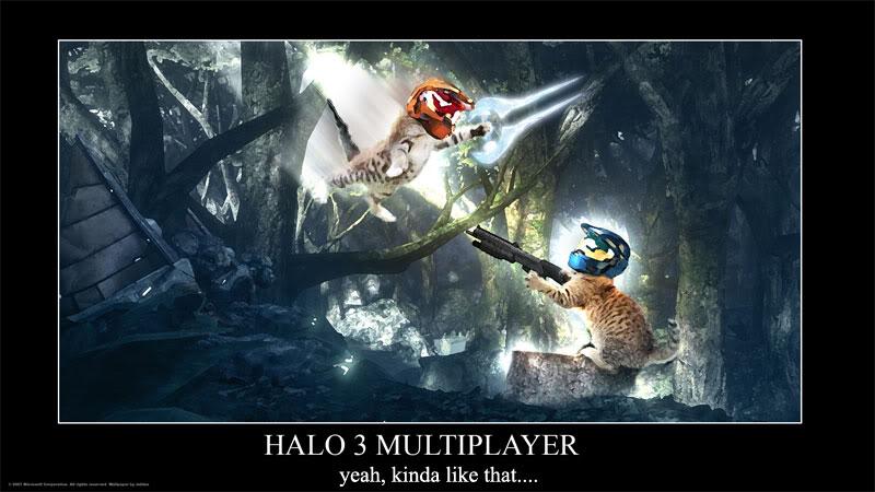 Halo 4 Quotes Quotesgram: Halo 3 Funny Quotes. QuotesGram