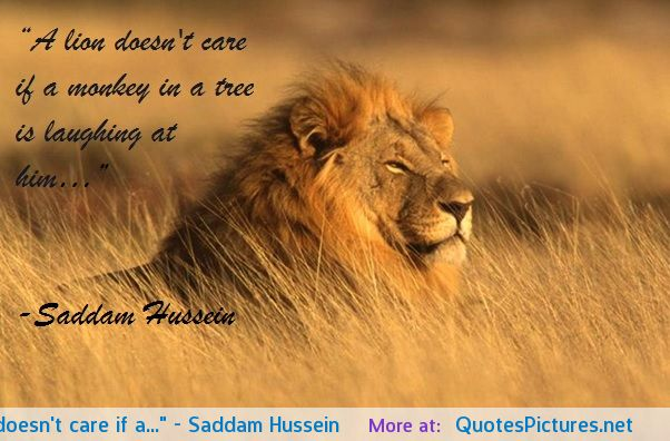 Lion Quotes And Sayings Lion Inspirational Quo...