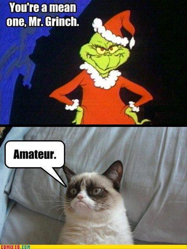 Grumpy Christmas Quotes. QuotesGram