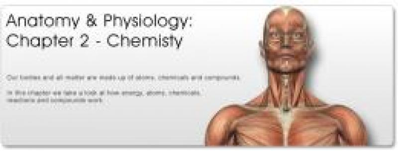Quotes About Anatomy And Physiology