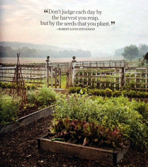 Country Life: Living The Country Life Quotes. QuotesGram