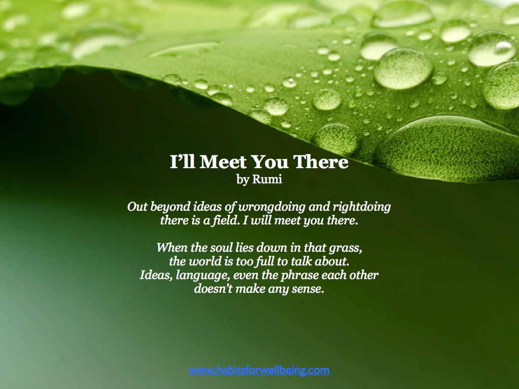 rumi there is a field ill meet you