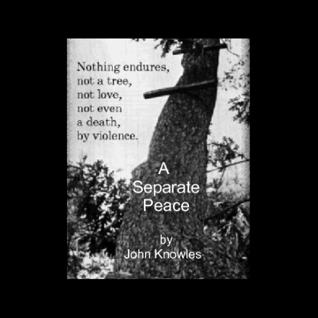quotes from a separate peace Home → sparknotes → literature study guides → a separate peace a separate peace john knowles table of contents  quotes important quotations explained.