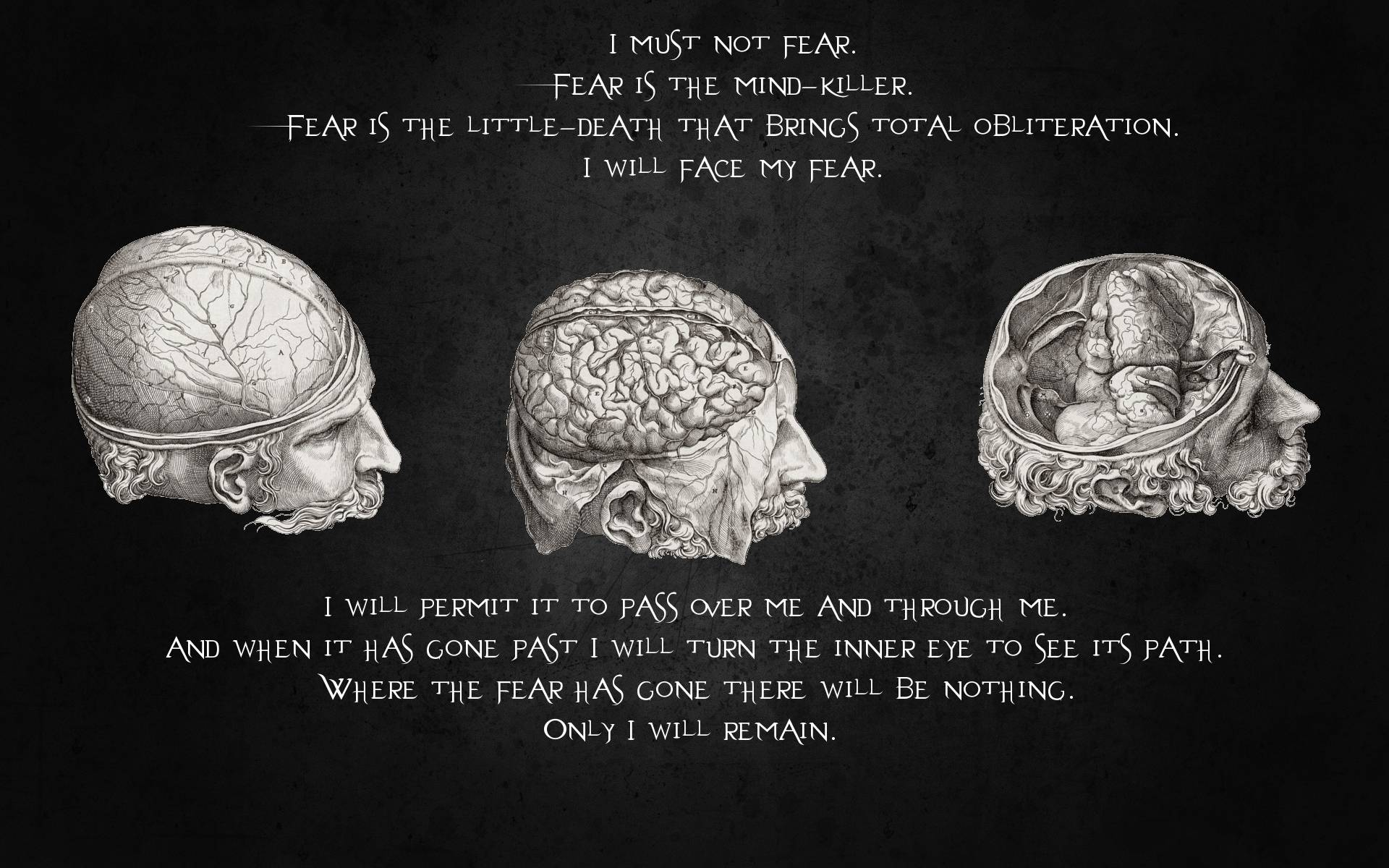 Mind Power Quotes. Quo...