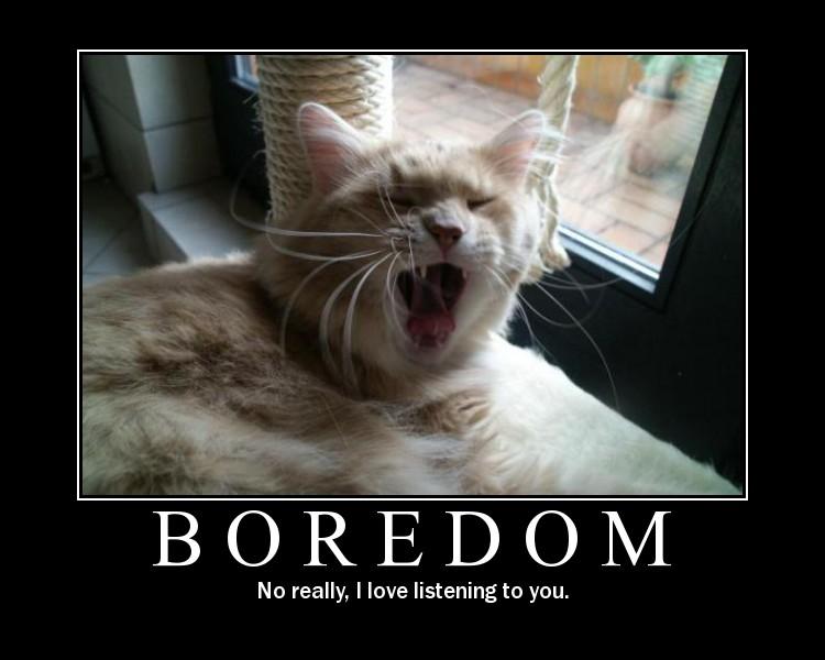 I M Bored Quotes: Im Bored Quotes Funny. QuotesGram