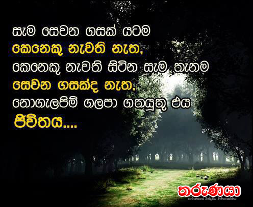 Tharunaya.com.au - තරුණයා, Sinhala Teledramas , Sinhala