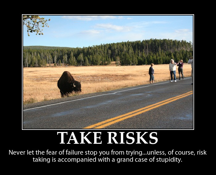 risk taking in relationship quotes quotesgram