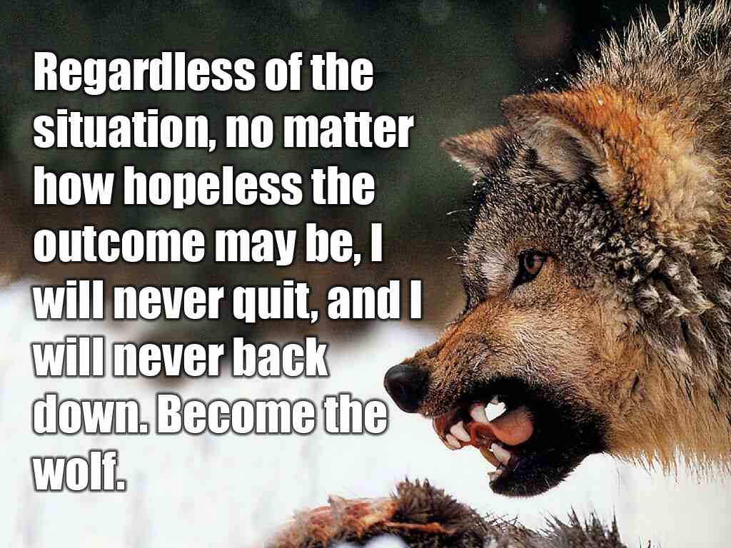 Wolf Quotes About Strength: Inspirational Quotes About Wolf. QuotesGram