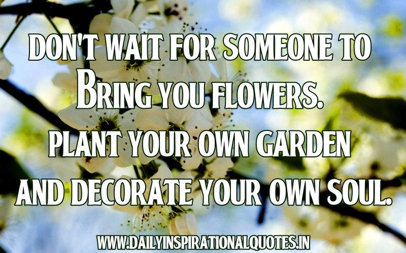 Plant Inspirational Quotes. QuotesGram