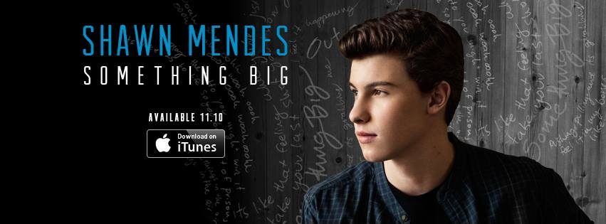 Something Big Shawn Mendes Quotes. QuotesGram