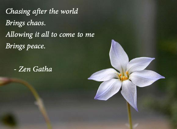 zen quotes on happiness - photo #8