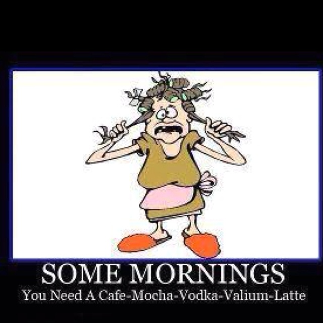 Good Morning Humor Images : Good morning humor quotes quotesgram