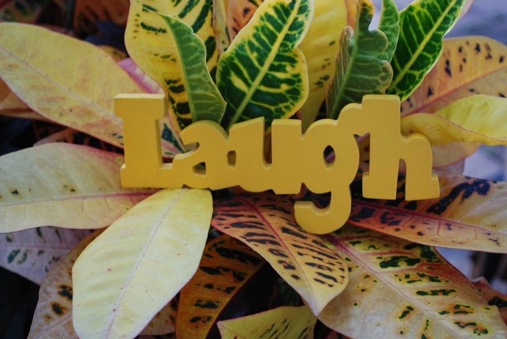 importance of laughter Caregiving and the importance of laughter april 24, 2012 by ltsolutions laugh when you can it is cheap medicine - lord byron as a caregiver, you can experience emotions such as depression, anxiety, sadness and hopelessness on a daily basis and it's easy to become bogged down.
