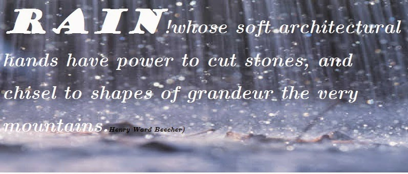 rain quotes and sayings - photo #19