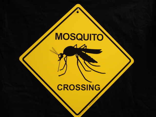 Mosquito Repellent Quotes Quotesgram