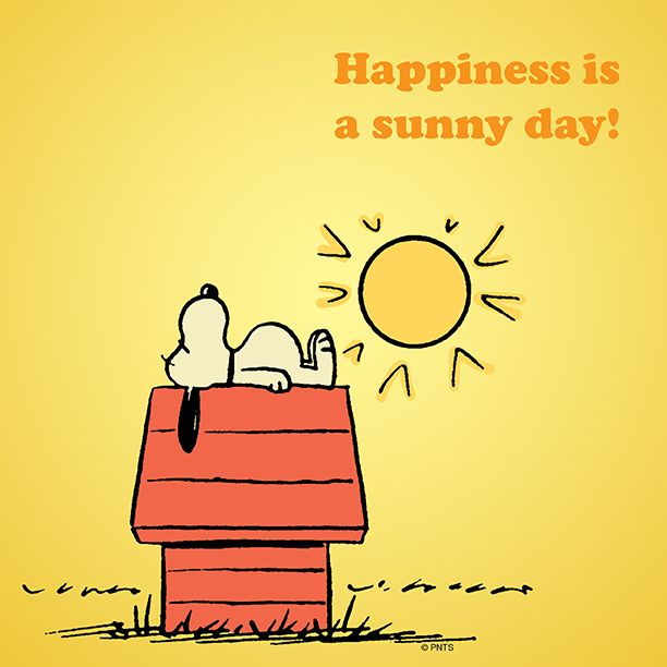 Sunny Saturday Quotes