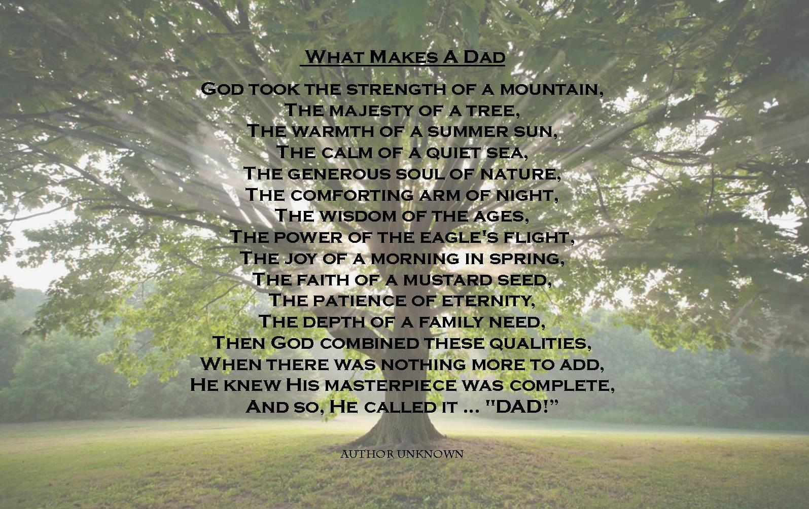 Dad memorial quotes funeral quotesgram for What makes a good father quotes