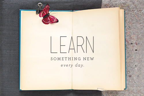 You Learn Something New Everyday Quote - Daily Quotes Of ...