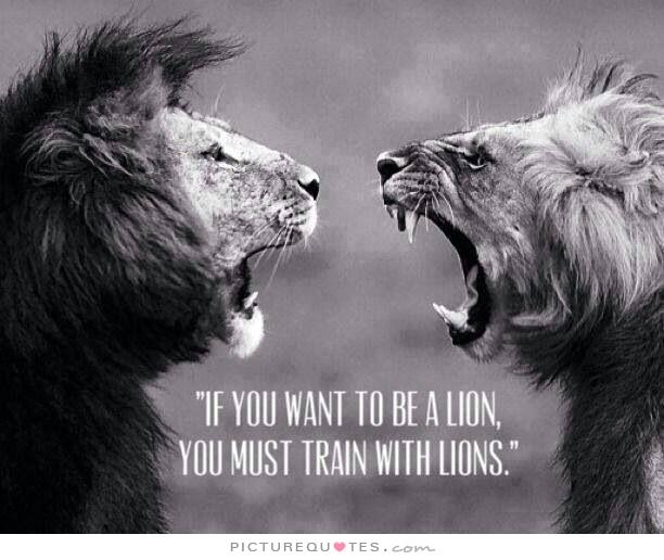 Lion Quotes And Sayings Motivational Qu...