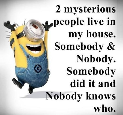 Minion Quotes And Stupid People. QuotesGram