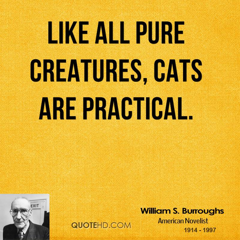 William S Burroughs Quotes On Cats