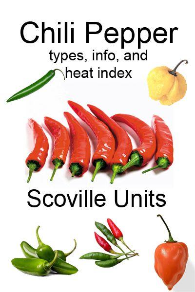 Chili Pepper Fast Food